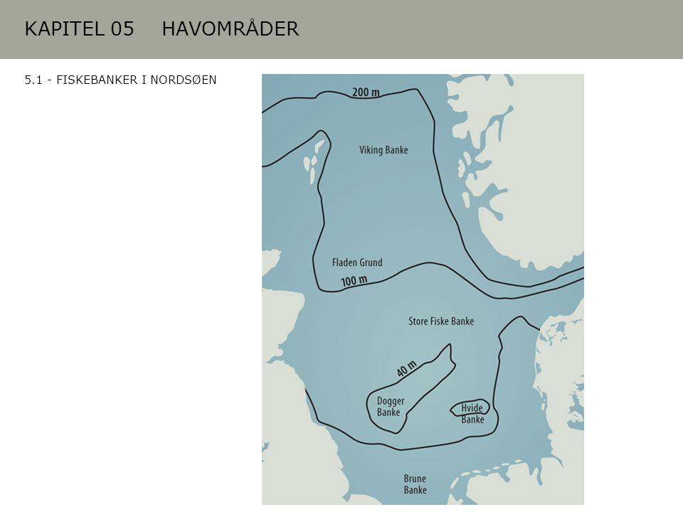 KAPITEL 05 HAVOMRÅDER 5.1 - FISKEBANKER I NORDSØEN