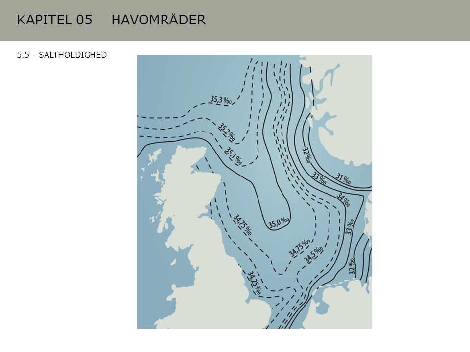 KAPITEL 05 HAVOMRÅDER 5.5 - SALTHOLDIGHED