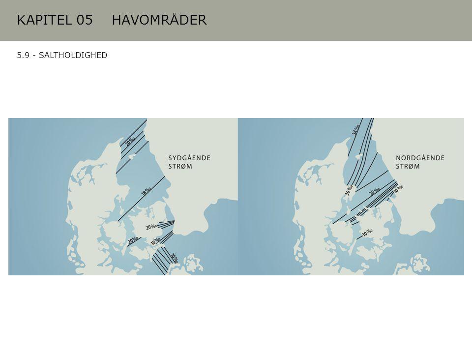 KAPITEL 05 HAVOMRÅDER 5.9 - SALTHOLDIGHED