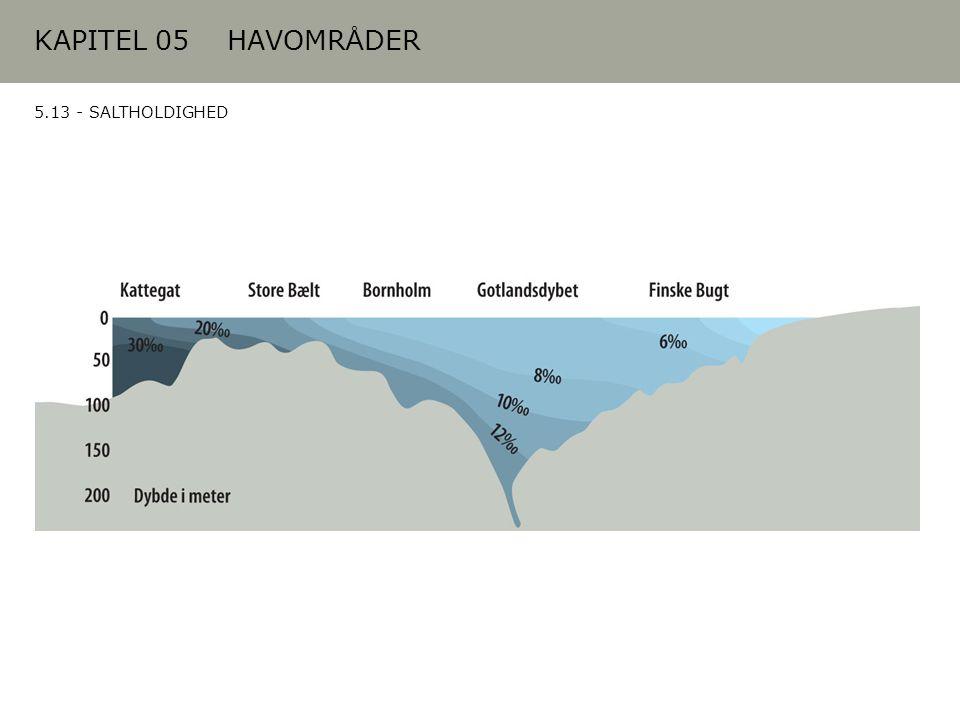 KAPITEL 05 HAVOMRÅDER 5.13 - SALTHOLDIGHED