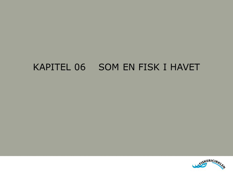 KAPITEL 06 SOM EN FISK I HAVET
