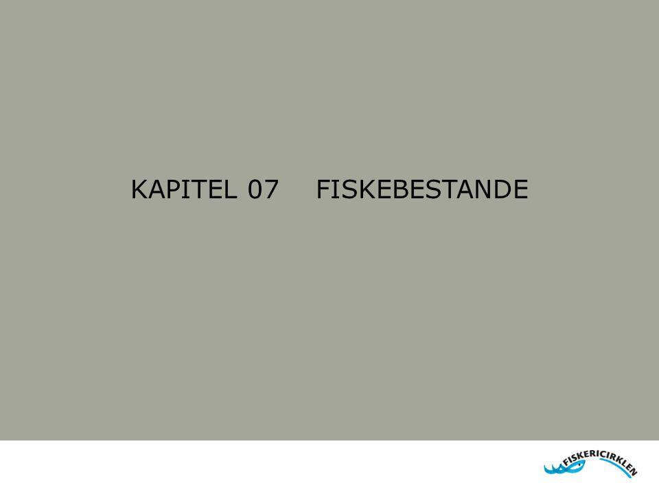 KAPITEL 07 FISKEBESTANDE