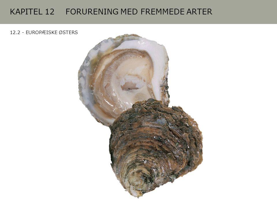 KAPITEL 12 FORURENING MED FREMMEDE ARTER