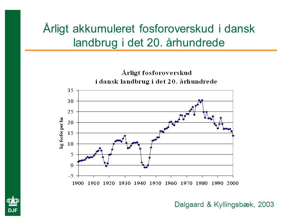 Årligt akkumuleret fosforoverskud i dansk landbrug i det 20. århundrede