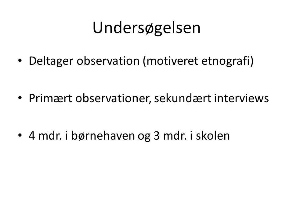 Undersøgelsen Deltager observation (motiveret etnografi)
