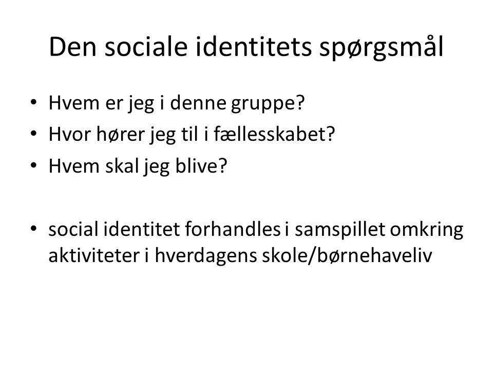 Den sociale identitets spørgsmål
