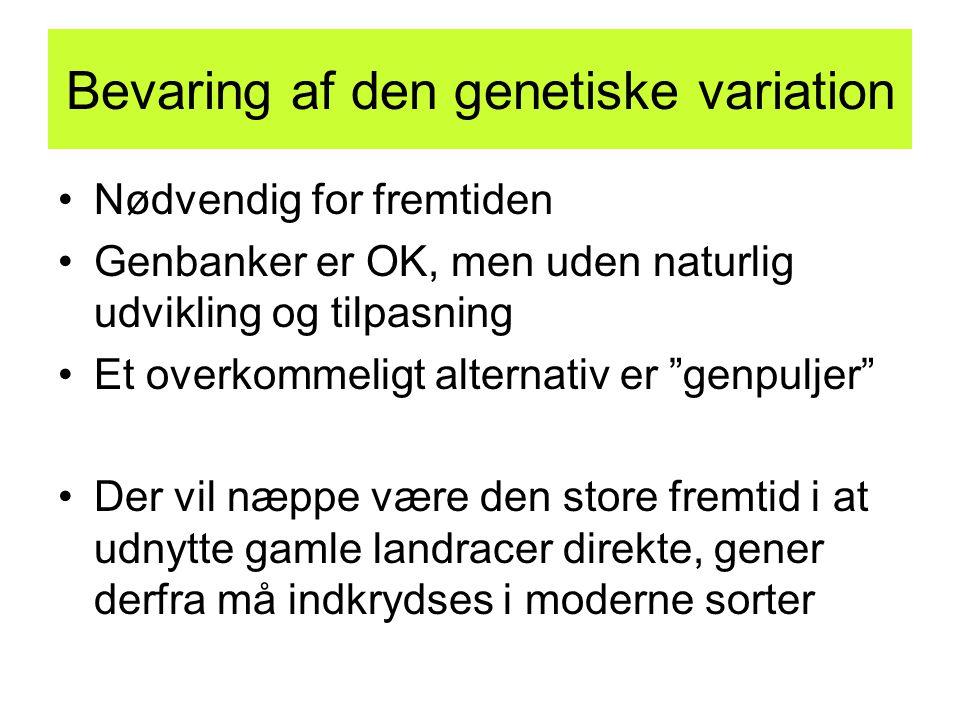 Bevaring af den genetiske variation