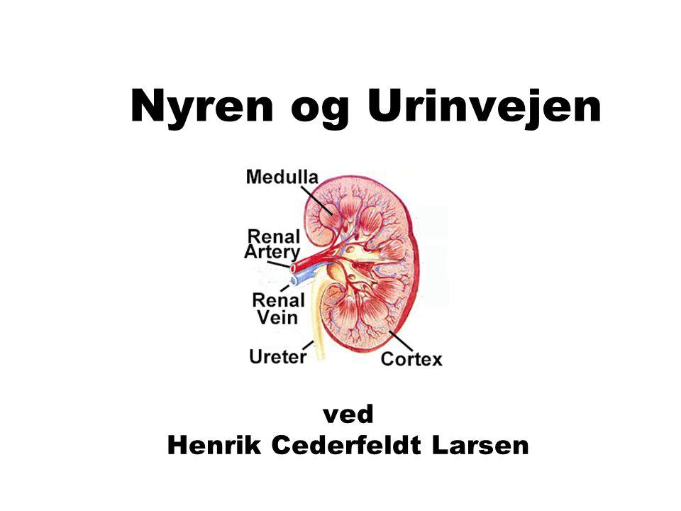 ved Henrik Cederfeldt Larsen