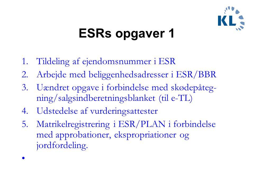 ESRs opgaver 1 Tildeling af ejendomsnummer i ESR