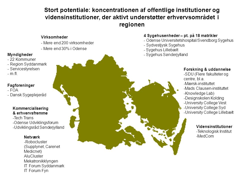 Stort potentiale: koncentrationen af offentlige institutioner og vidensinstitutioner, der aktivt understøtter erhvervsområdet i regionen