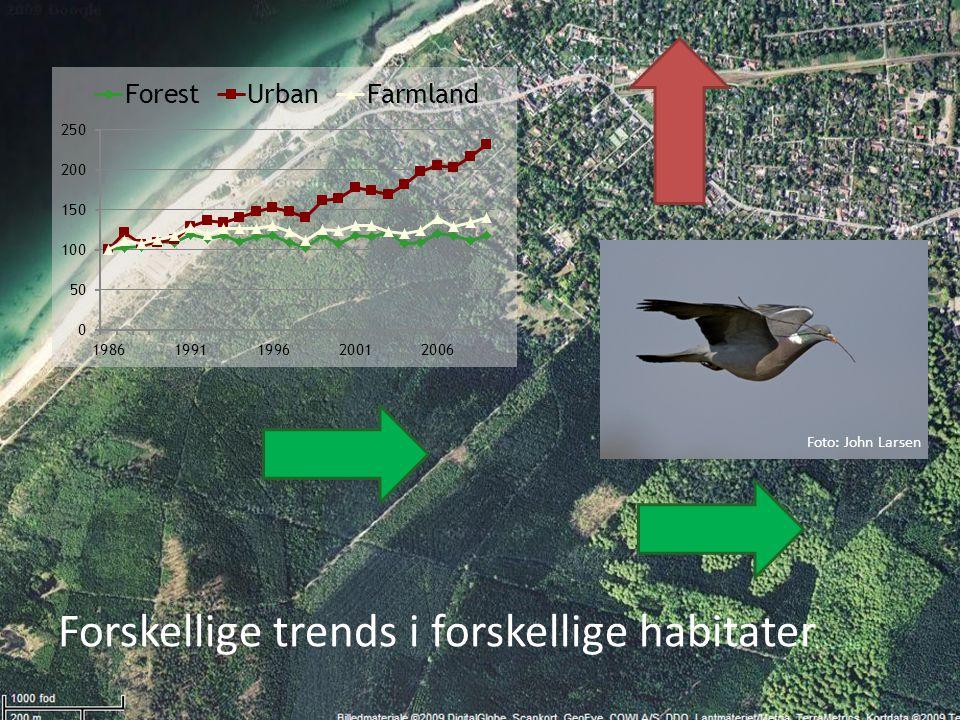 Forskellige trends i forskellige habitater