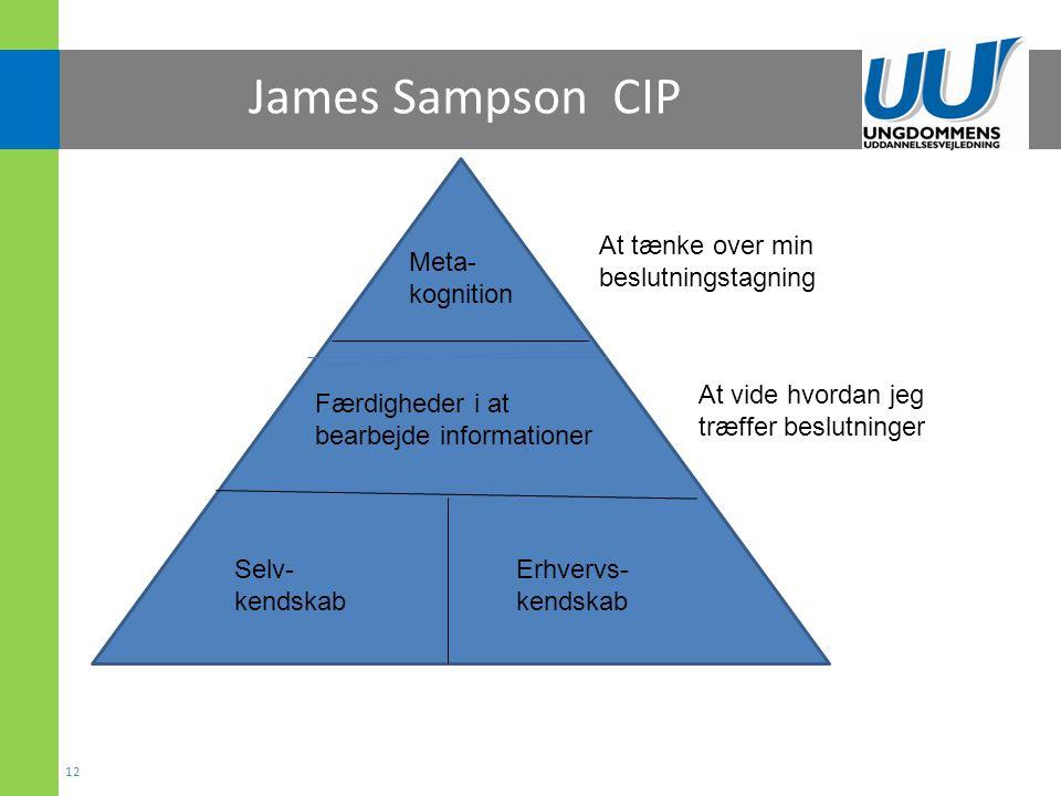 James Sampson CIP At tænke over min beslutningstagning Meta- kognition