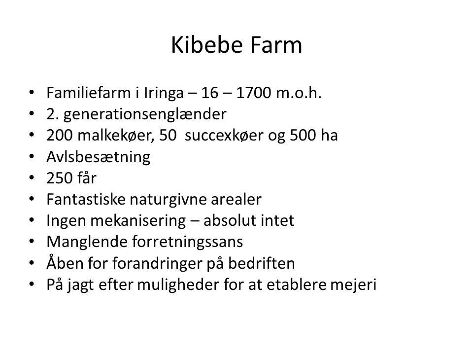 Kibebe Farm Familiefarm i Iringa – 16 – 1700 m.o.h.