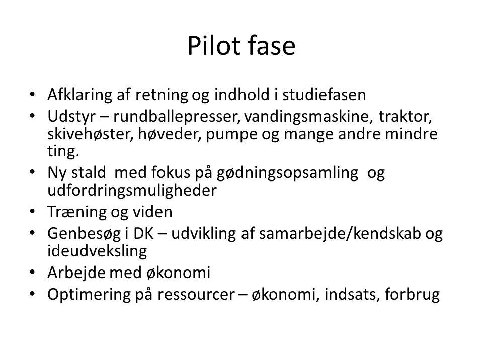 Pilot fase Afklaring af retning og indhold i studiefasen