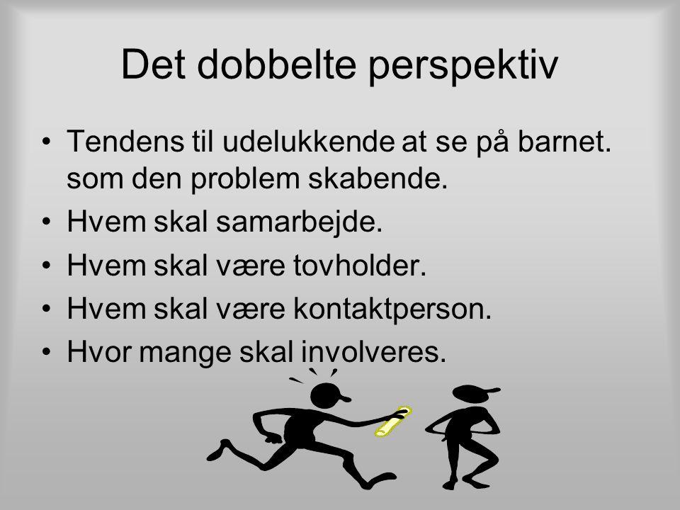Det dobbelte perspektiv