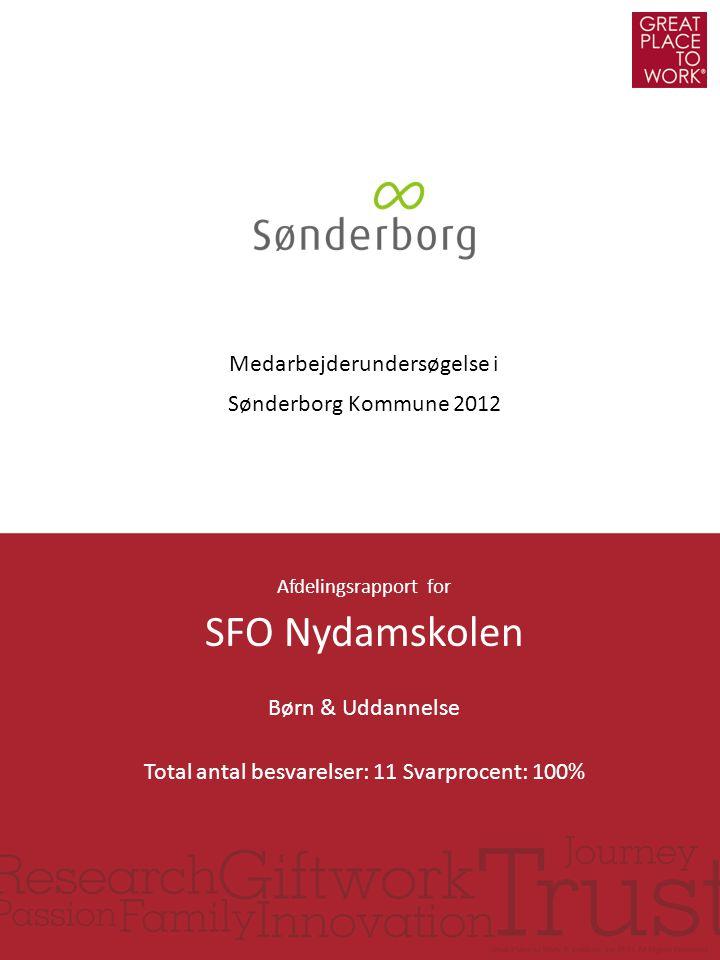 SFO Nydamskolen Medarbejderundersøgelse i Sønderborg Kommune 2012