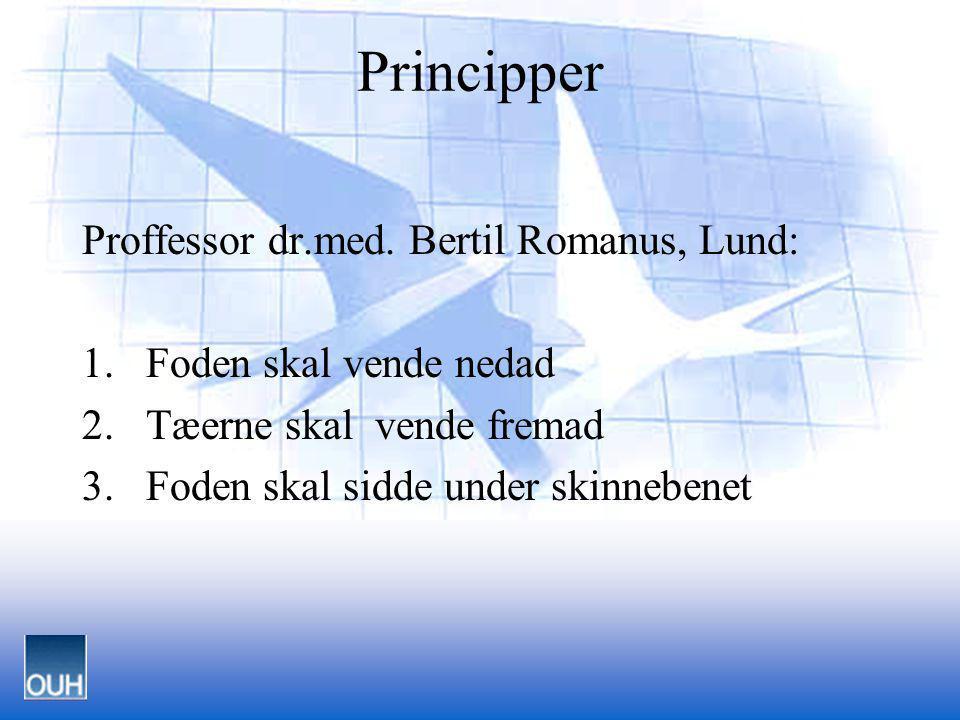 Principper Proffessor dr.med. Bertil Romanus, Lund:
