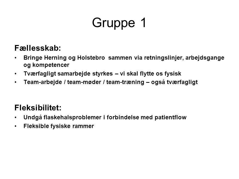 Gruppe 1 Fællesskab: Fleksibilitet:
