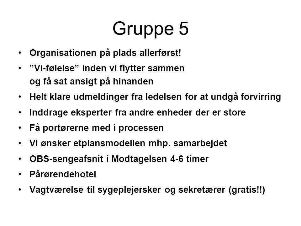 Gruppe 5 Organisationen på plads allerførst!