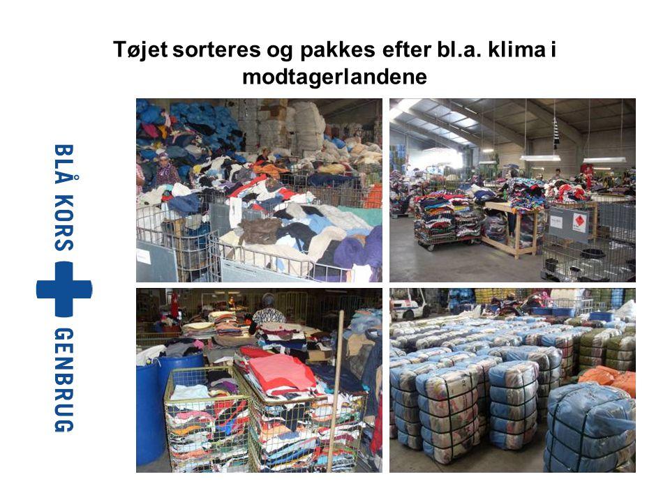 Tøjet sorteres og pakkes efter bl.a. klima i modtagerlandene