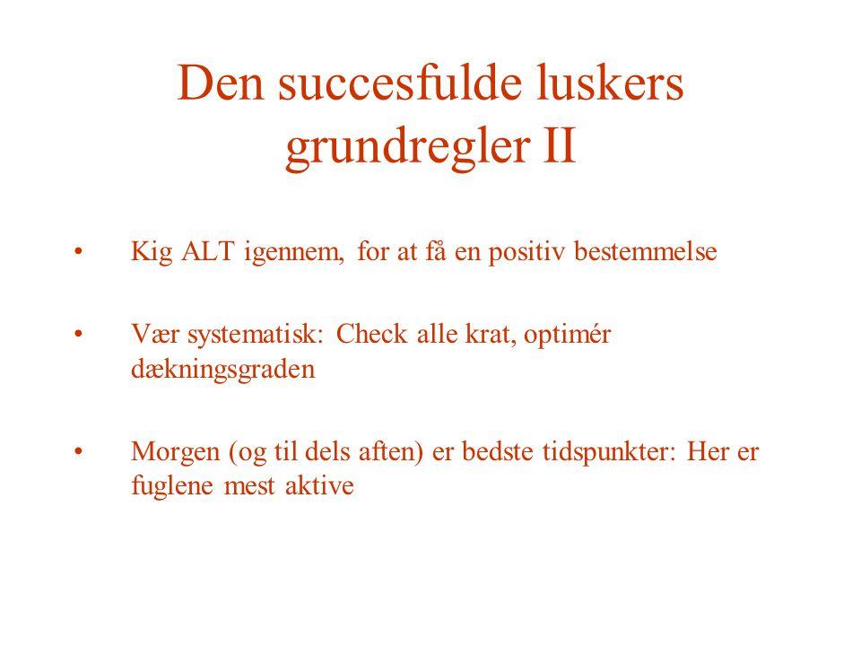 Den succesfulde luskers grundregler II