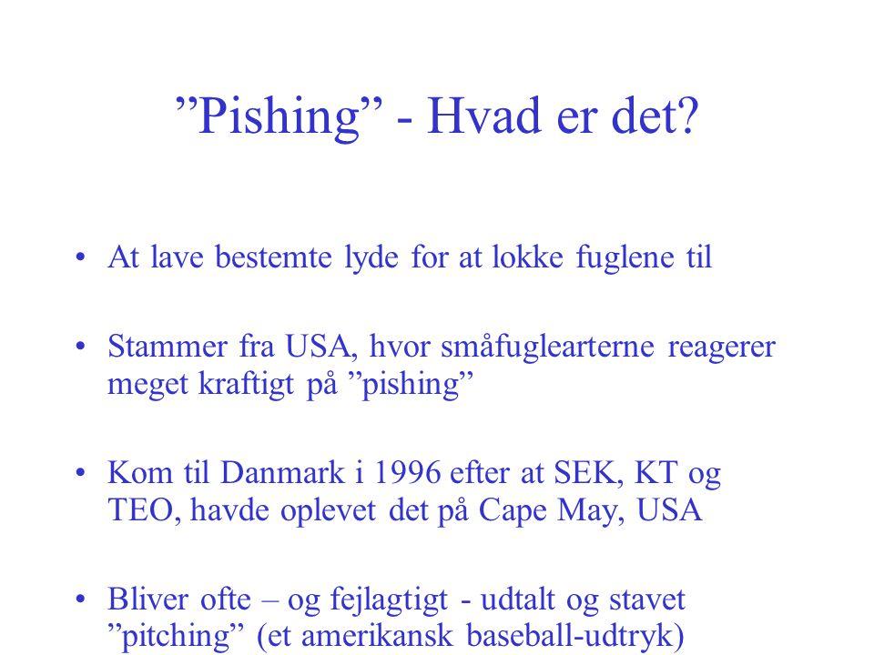 Pishing - Hvad er det At lave bestemte lyde for at lokke fuglene til.