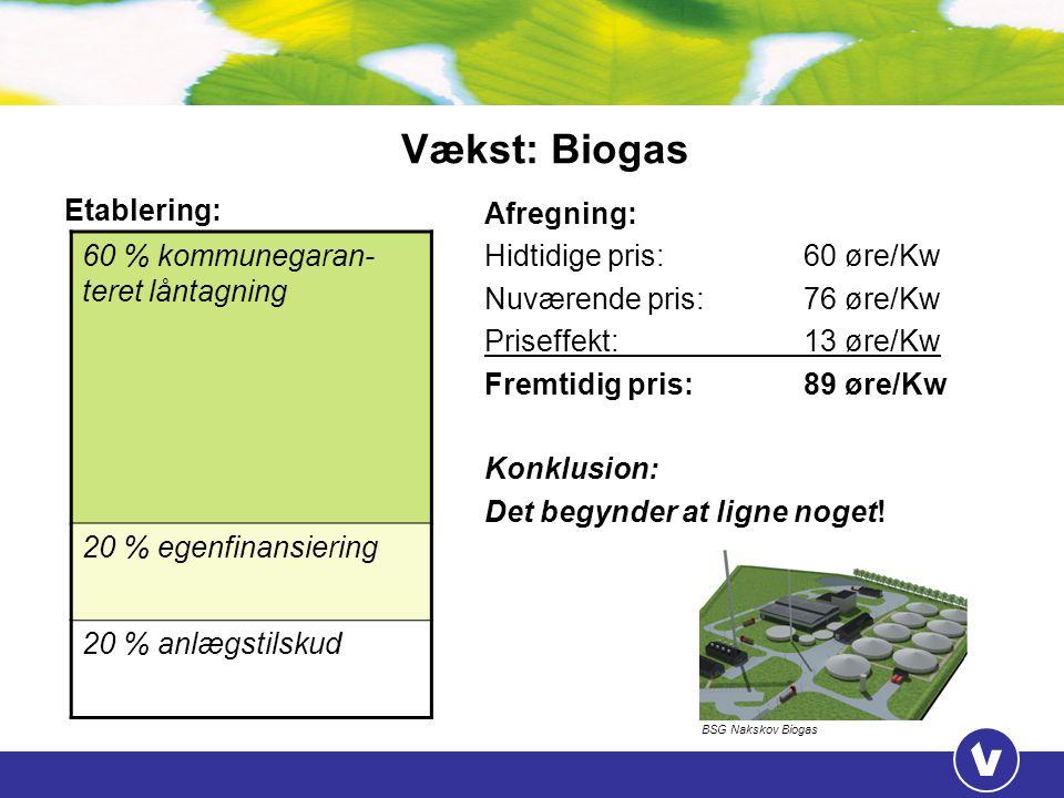 Vækst: Biogas 60 % kommunegaran-teret låntagning Etablering: