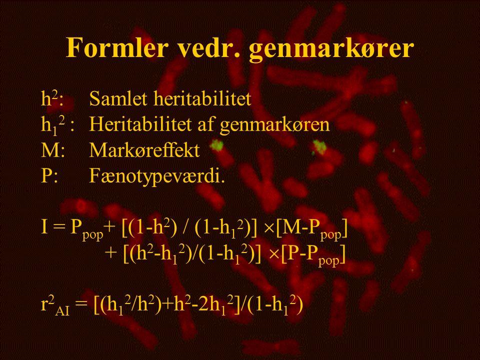 Formler vedr. genmarkører