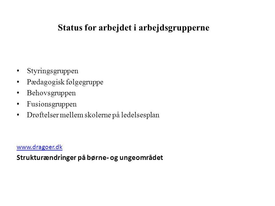 Status for arbejdet i arbejdsgrupperne