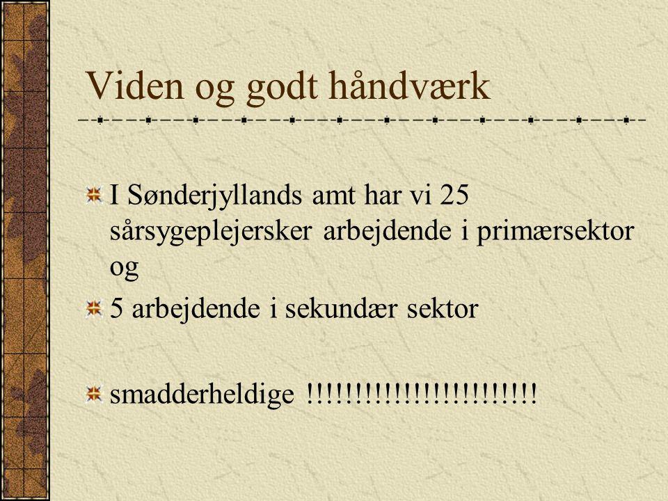 Viden og godt håndværk I Sønderjyllands amt har vi 25 sårsygeplejersker arbejdende i primærsektor og.