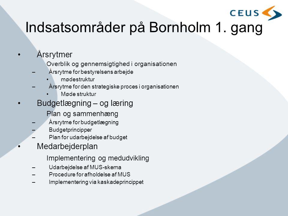 Indsatsområder på Bornholm 1. gang