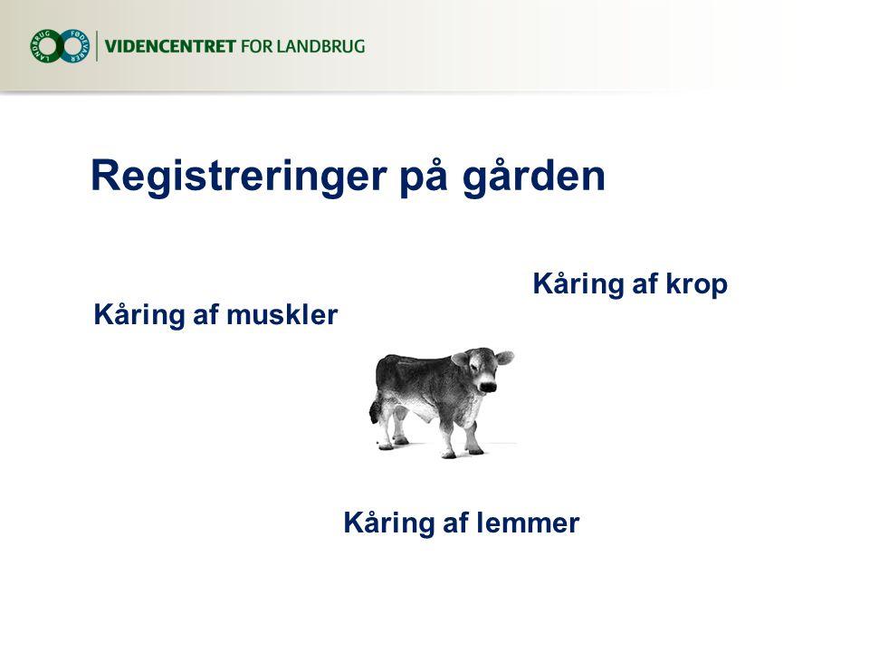 Registreringer på gården