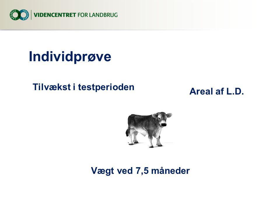 Individprøve Tilvækst i testperioden Areal af L.D.