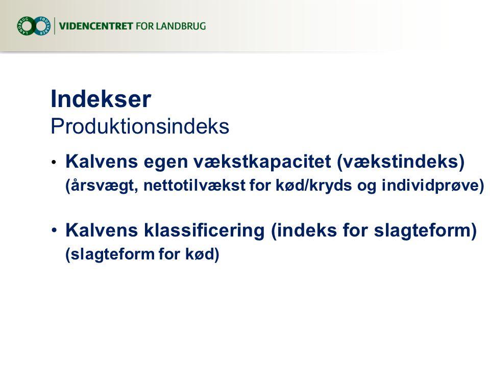 Indekser Produktionsindeks