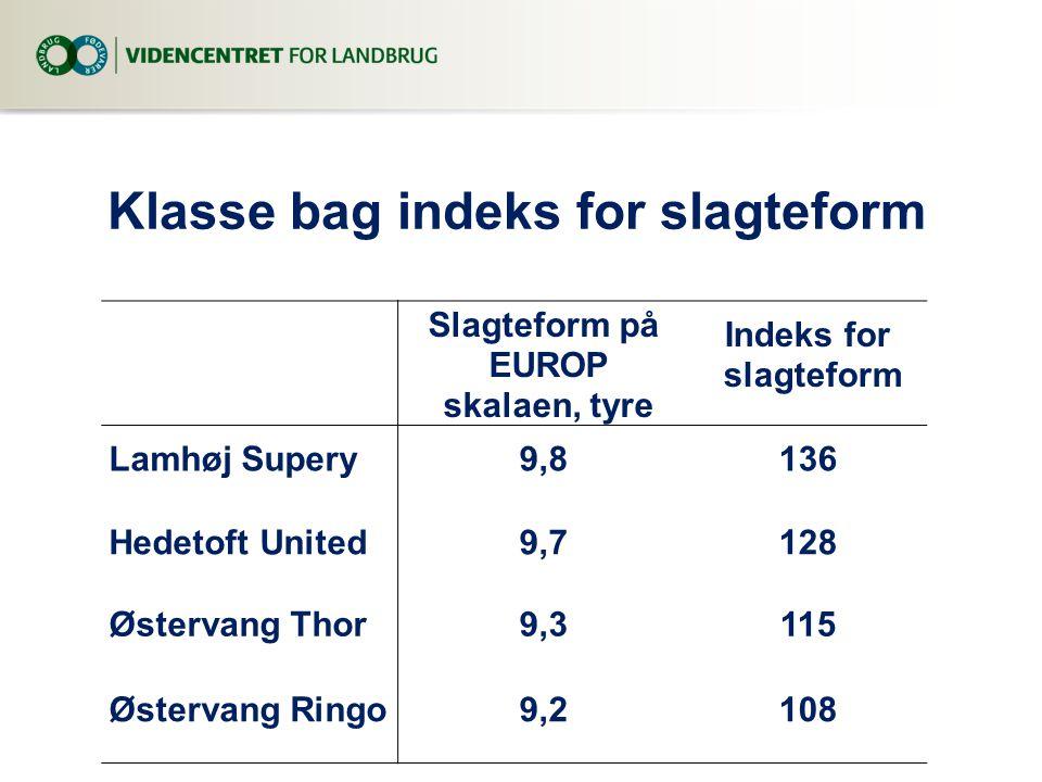 Klasse bag indeks for slagteform