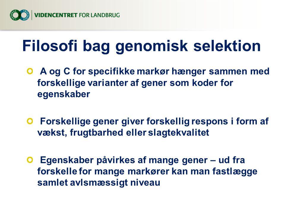 Filosofi bag genomisk selektion