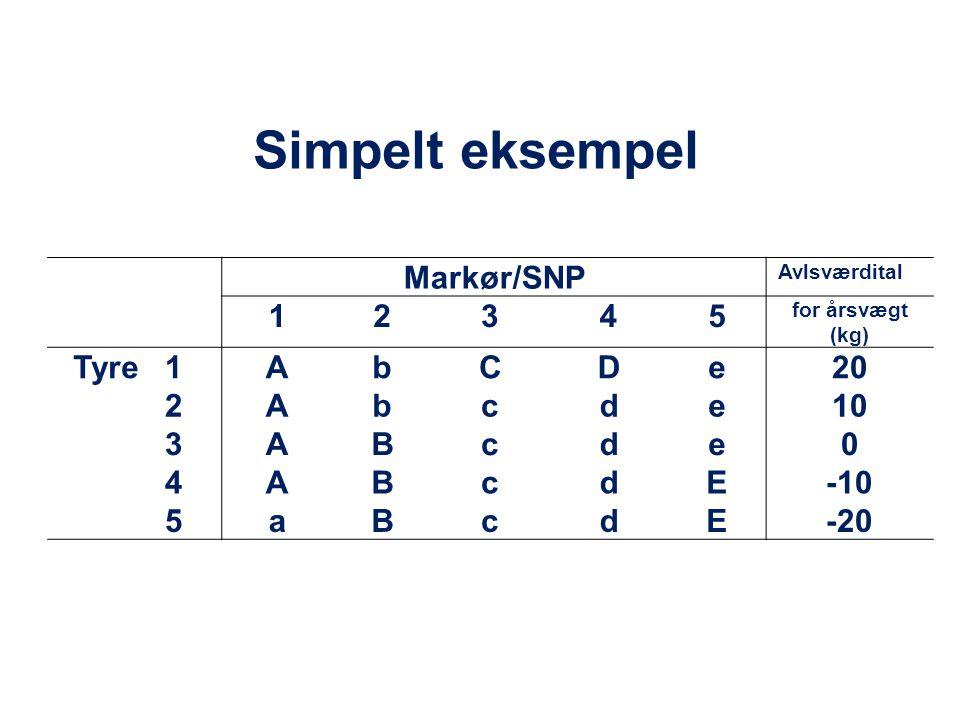 Simpelt eksempel Markør/SNP 1 2 3 4 5 Tyre A b C D e 20 c d 10 B E -10
