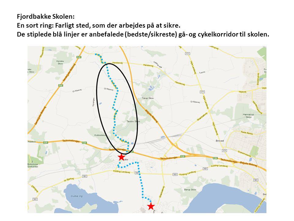 Fjordbakke Skolen: En sort ring: Farligt sted, som der arbejdes på at sikre.