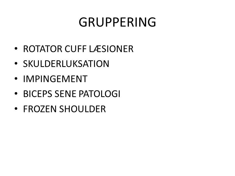 GRUPPERING ROTATOR CUFF LÆSIONER SKULDERLUKSATION IMPINGEMENT