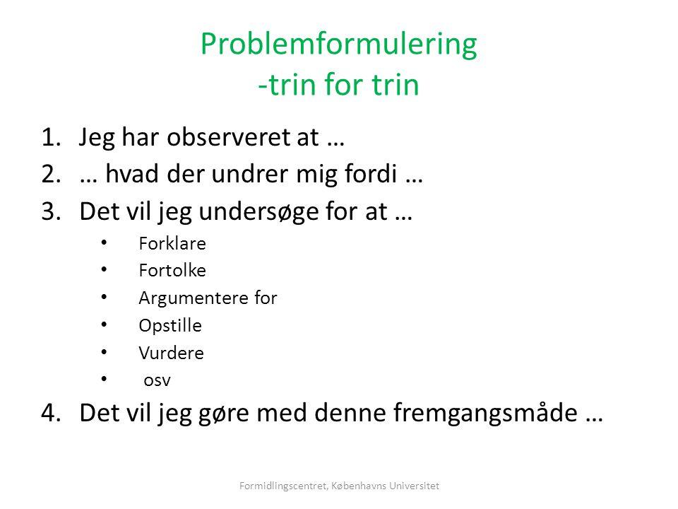 Problemformulering -trin for trin