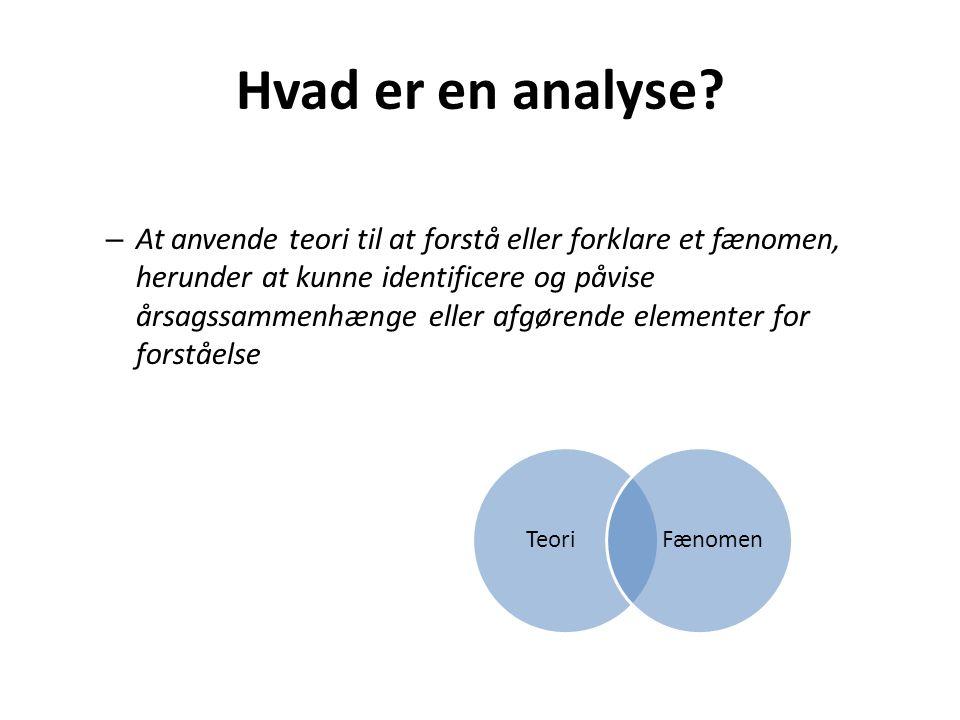 Hvad er en analyse