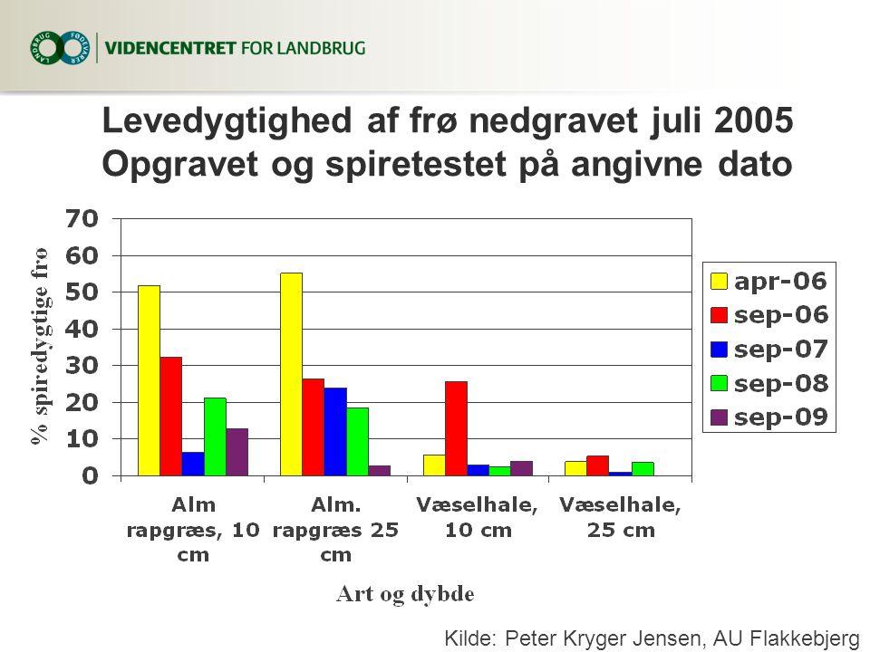 Levedygtighed af frø nedgravet juli 2005 Opgravet og spiretestet på angivne dato