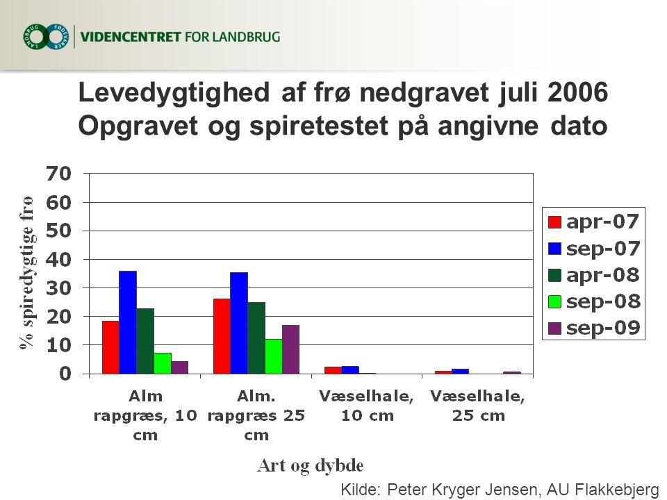 Levedygtighed af frø nedgravet juli 2006 Opgravet og spiretestet på angivne dato