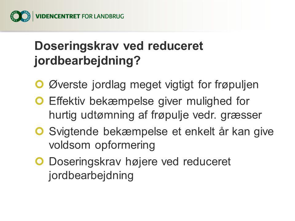 Doseringskrav ved reduceret jordbearbejdning