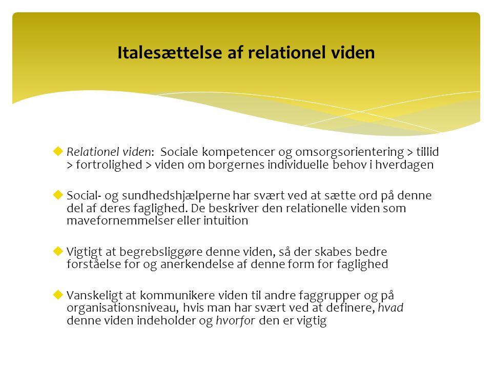 Italesættelse af relationel viden
