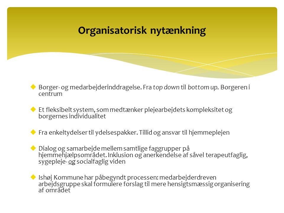 Organisatorisk nytænkning