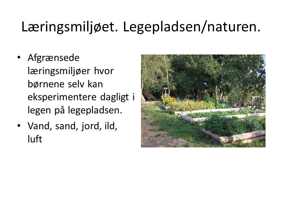Læringsmiljøet. Legepladsen/naturen.