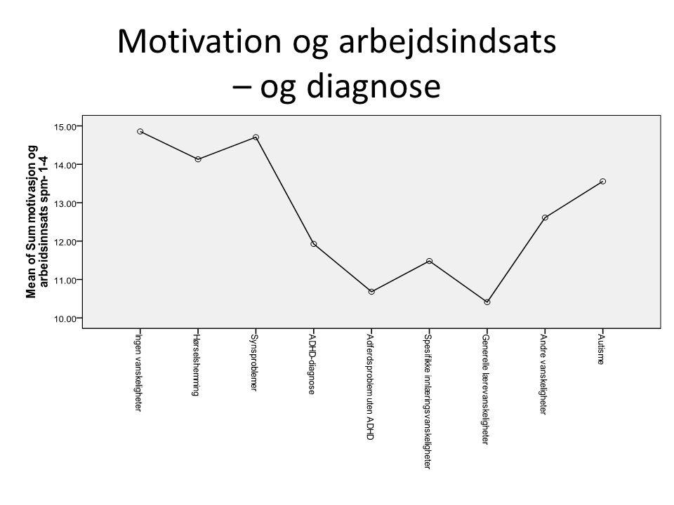 Motivation og arbejdsindsats – og diagnose