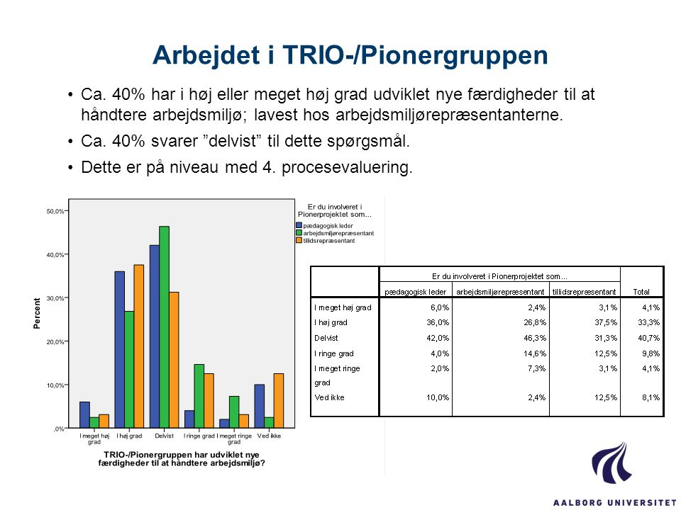 Arbejdet i TRIO-/Pionergruppen