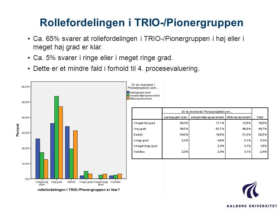 Rollefordelingen i TRIO-/Pionergruppen